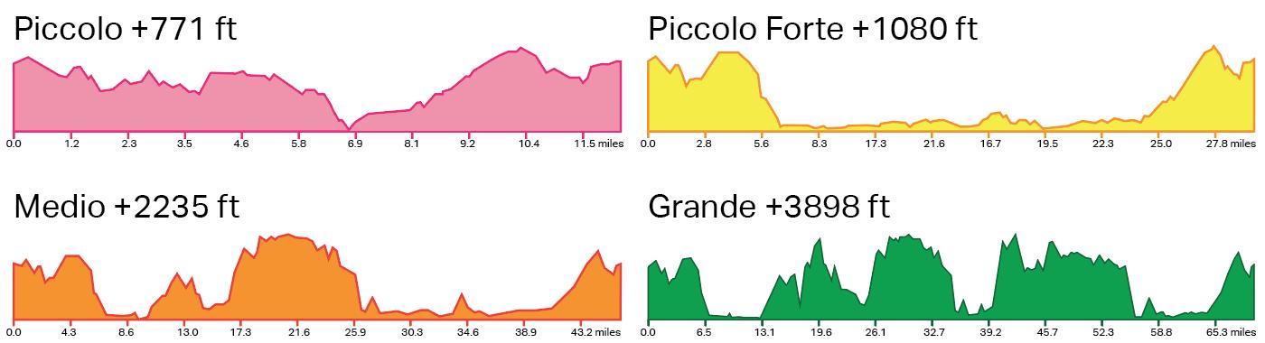 multiple-elevation-graphs