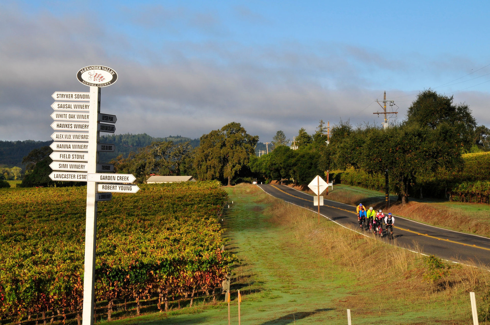 Wine Country Bikes - Sonoma, California Bike Tours & Rentals