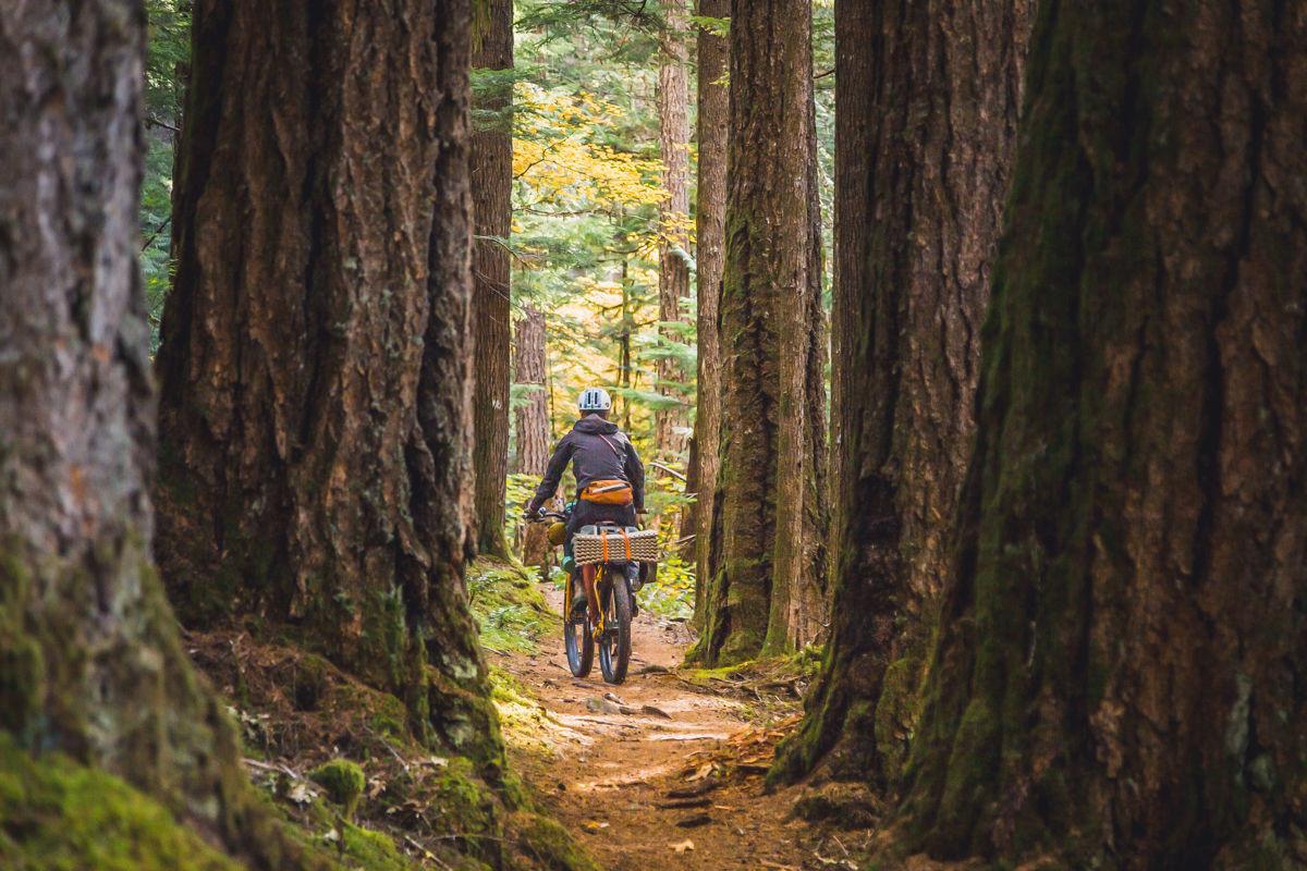 75 Classic Rides Oregon The Best Road Biking Routes